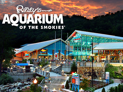 Ripley's Aquarium Special Offer