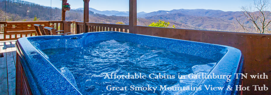 Gatlinburg cabins condos chalets mountain rentals of for 1 bedroom pet friendly cabins in gatlinburg tn