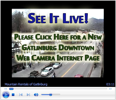 Gatlinburg Tennessee Great Smoky Mountains Live Webcam